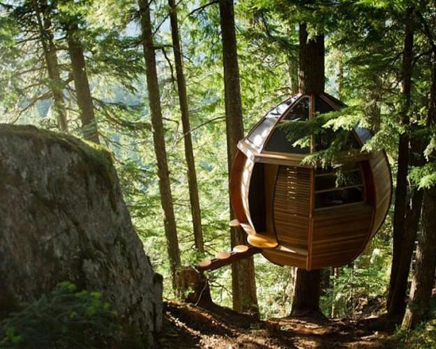 tree-house-2