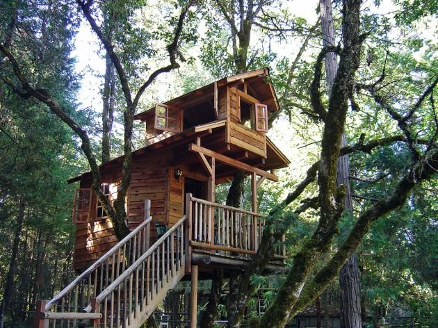 tree-house-8