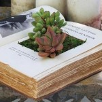 10-creative-and-unique-diy-planters-inspire-your-home-garden.w654