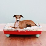Red-suitcase-dog-bed-DIY