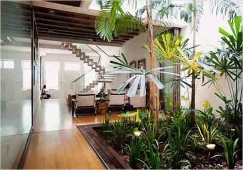 indoor-garden-7
