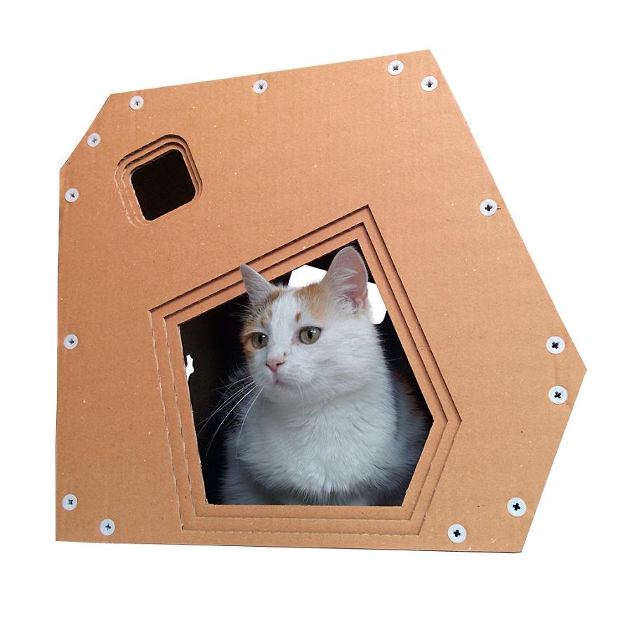 85c2beeed4fe Σπίτια για γάτες από χαρτί