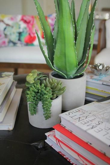 ψεύτικα φυτά σαν αληθινά