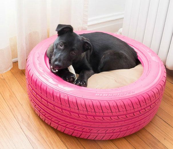 Ένα κρεβάτι για τον μικρό σου φίλο