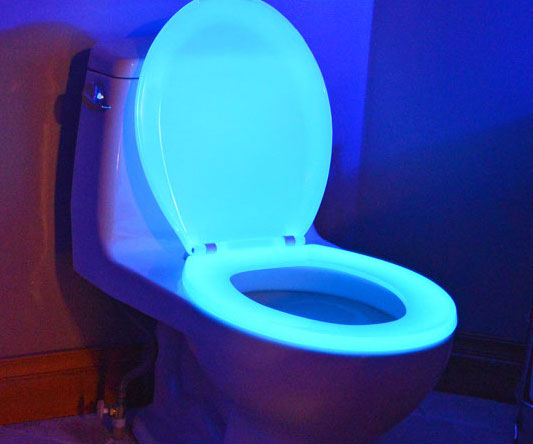 glow-in-the-dark-toilet-seat1