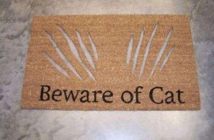 funny-front-door-mats