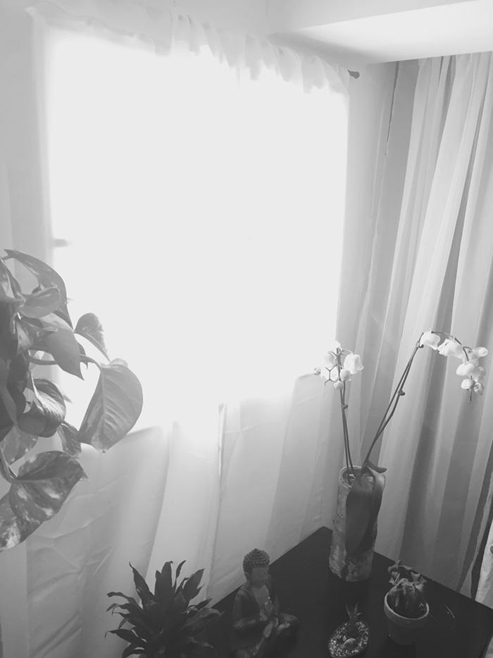 παράθυρο3