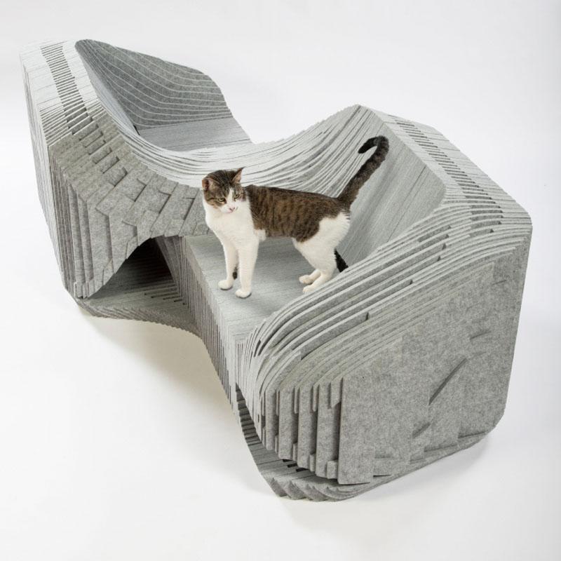 cat-shelter_240316_04