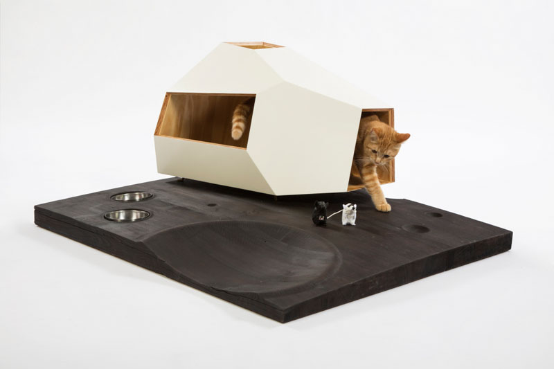 cat-shelter_240316_06