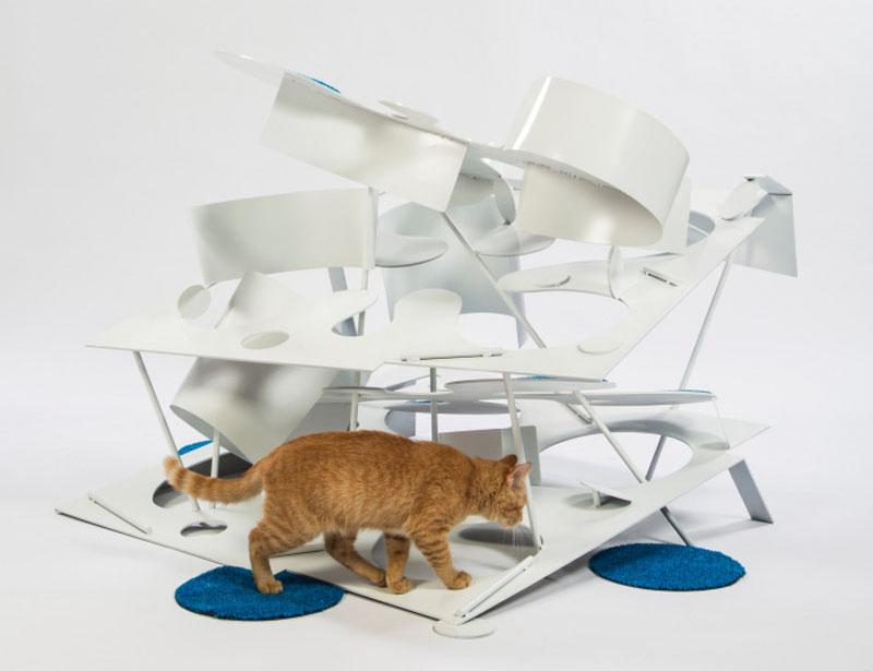 cat-shelter_240316_07