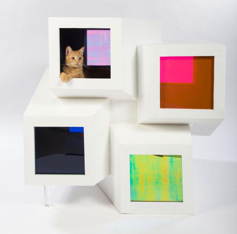 cat-shelter_240316_08