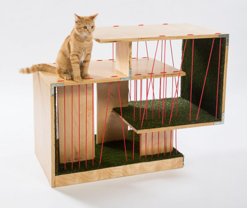 cat-shelter_240316_10