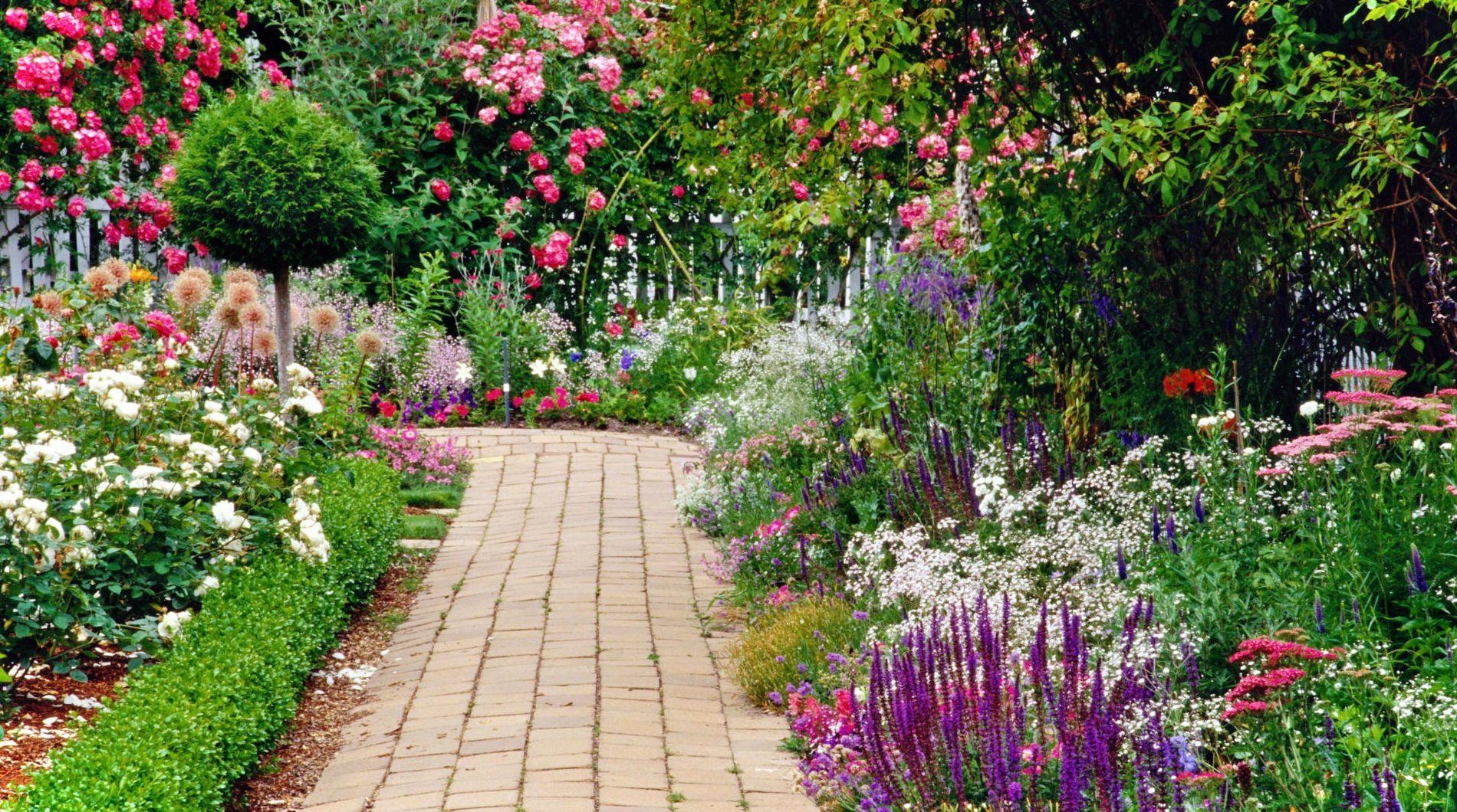 Garden 44