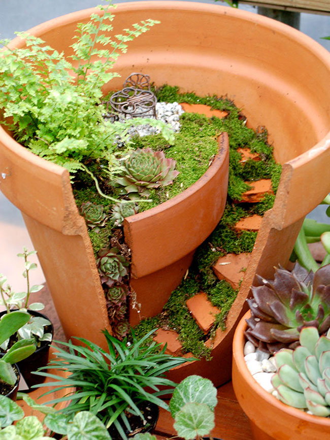 cool-broken-pot-fixed-garden