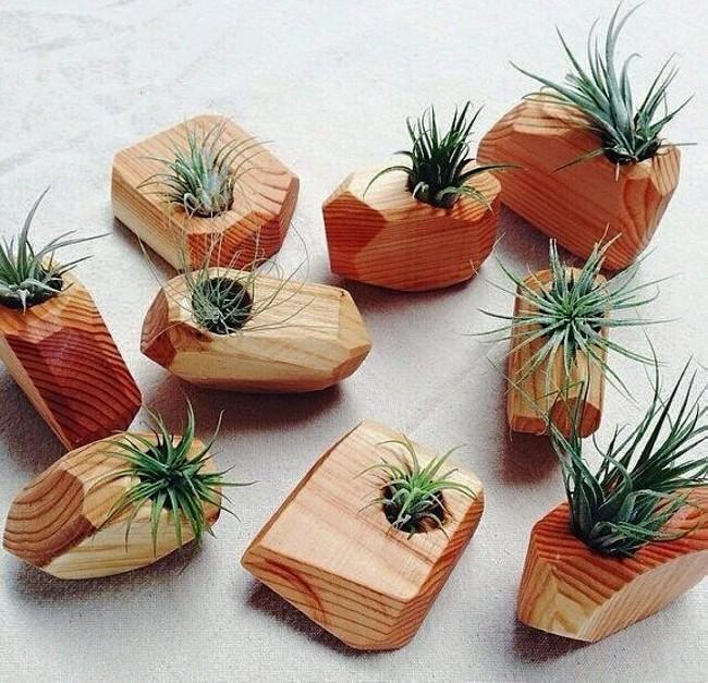 ξύλο2