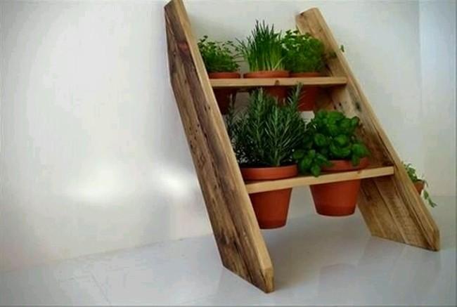 ξύλο4