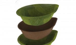 leaf-bowls-by-Leaf-Republic-2-1020x610