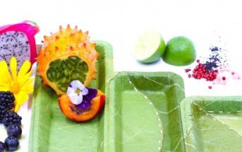 leaf-bowls-by-Leaf-Republic-5-1020x610