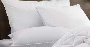 hampton-feather-down-hampton-pillow-HAM-108_xlrg