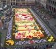 flowercarpet1