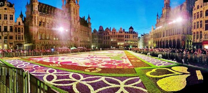 flowercarpet8