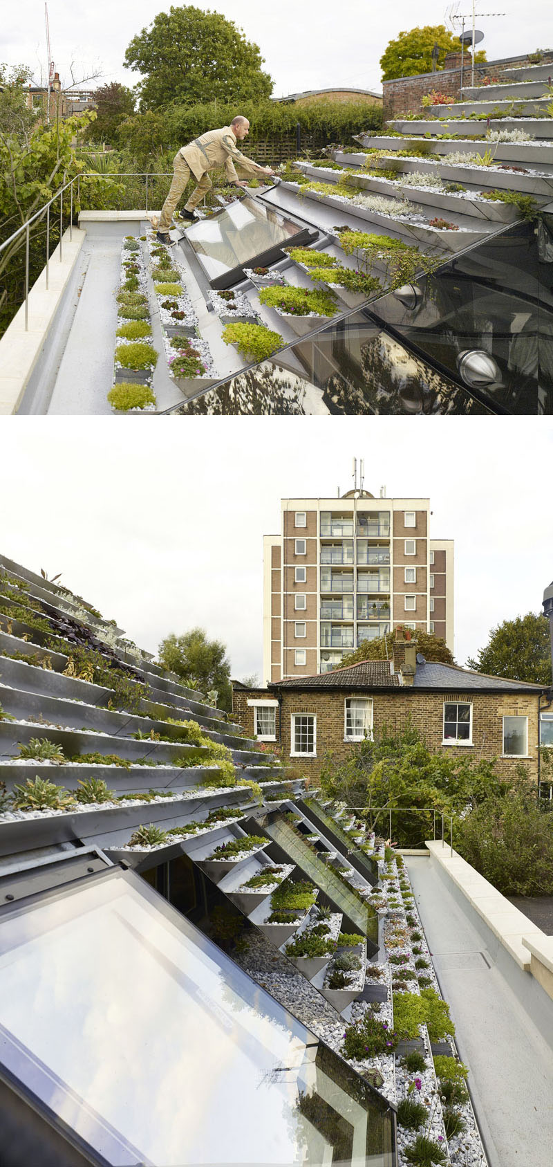 green-roof_040816_05