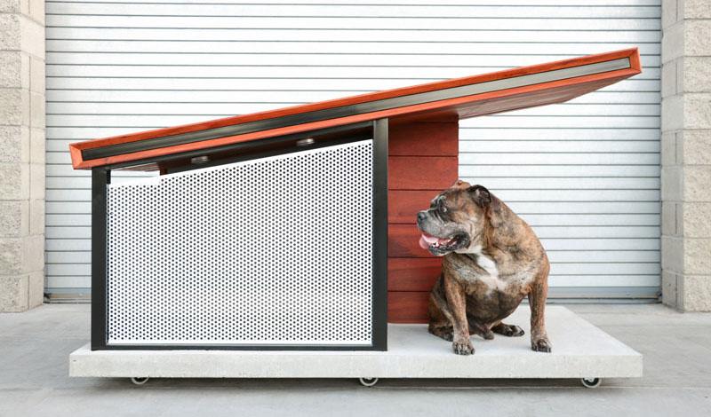 dog-house_020916_01