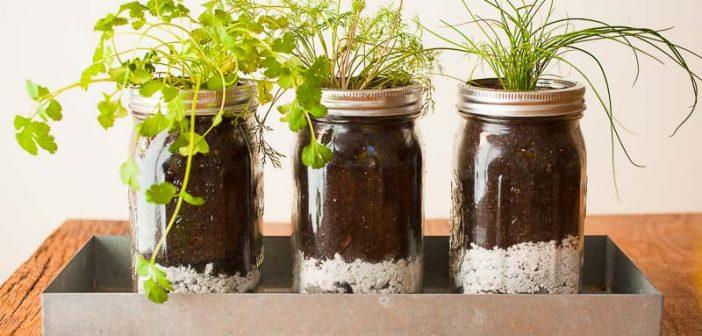 Ανανεώστε το σπίτι σας στο λεπτό με αυτά τα υπέροχα βαζάκια με φυτά