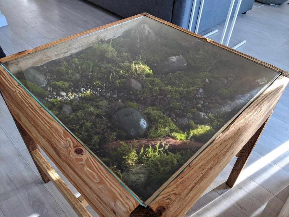 τραπέζια δάση